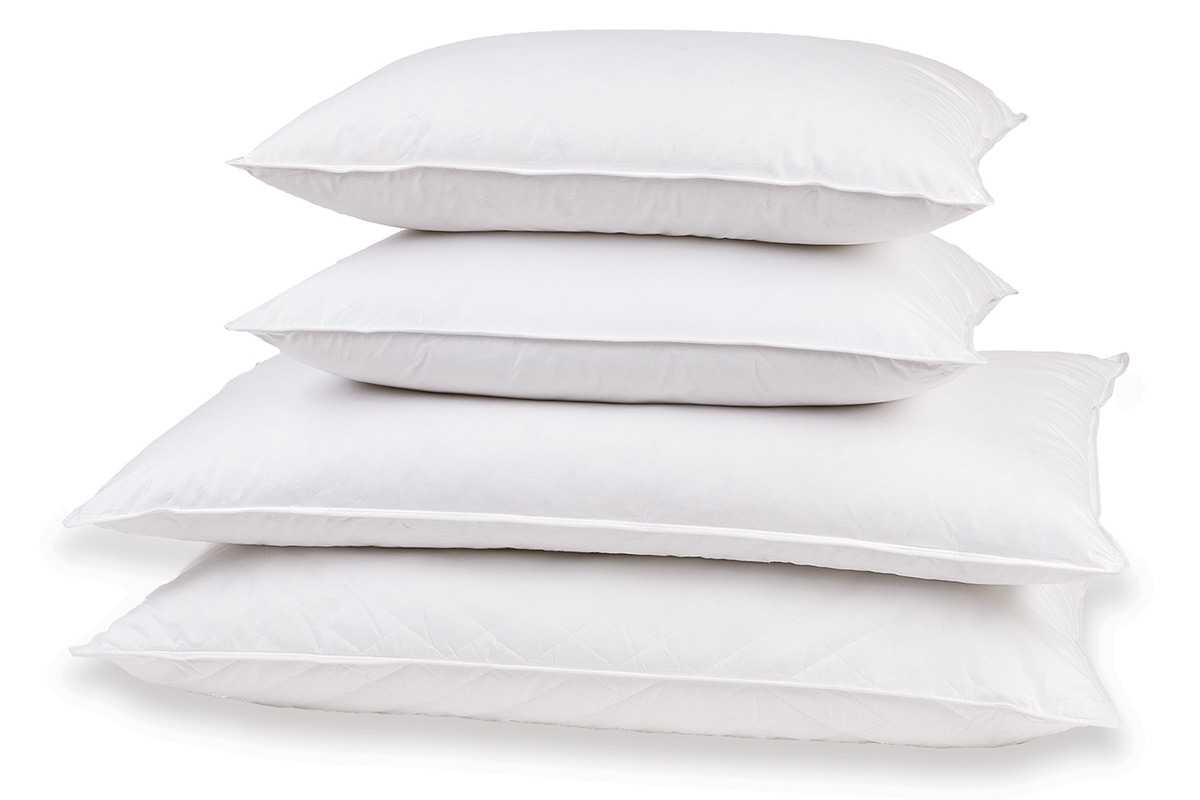 f down sheraton xlrg filled sh store pillows feather pillow product